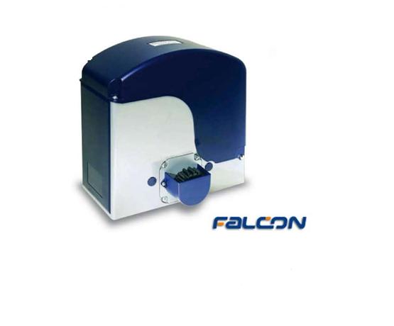 Falcon1 555x460